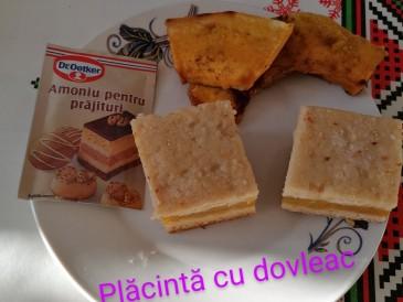 Prăjitura pregătită de Elisabeta Monica