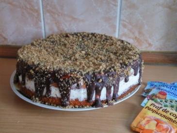 Prăjitura pregătită de Mihailova